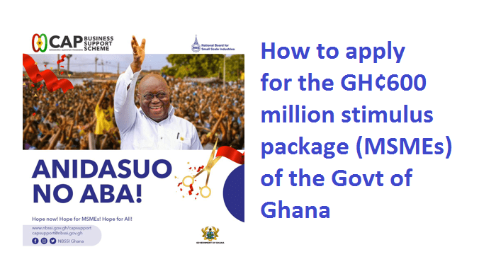 How to apply for the GH¢600 million stimulus package (MSMEs)