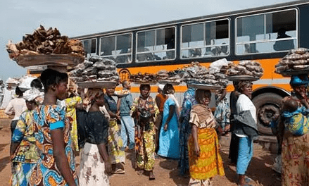 NDC curses NPP for busing minors to registration centres